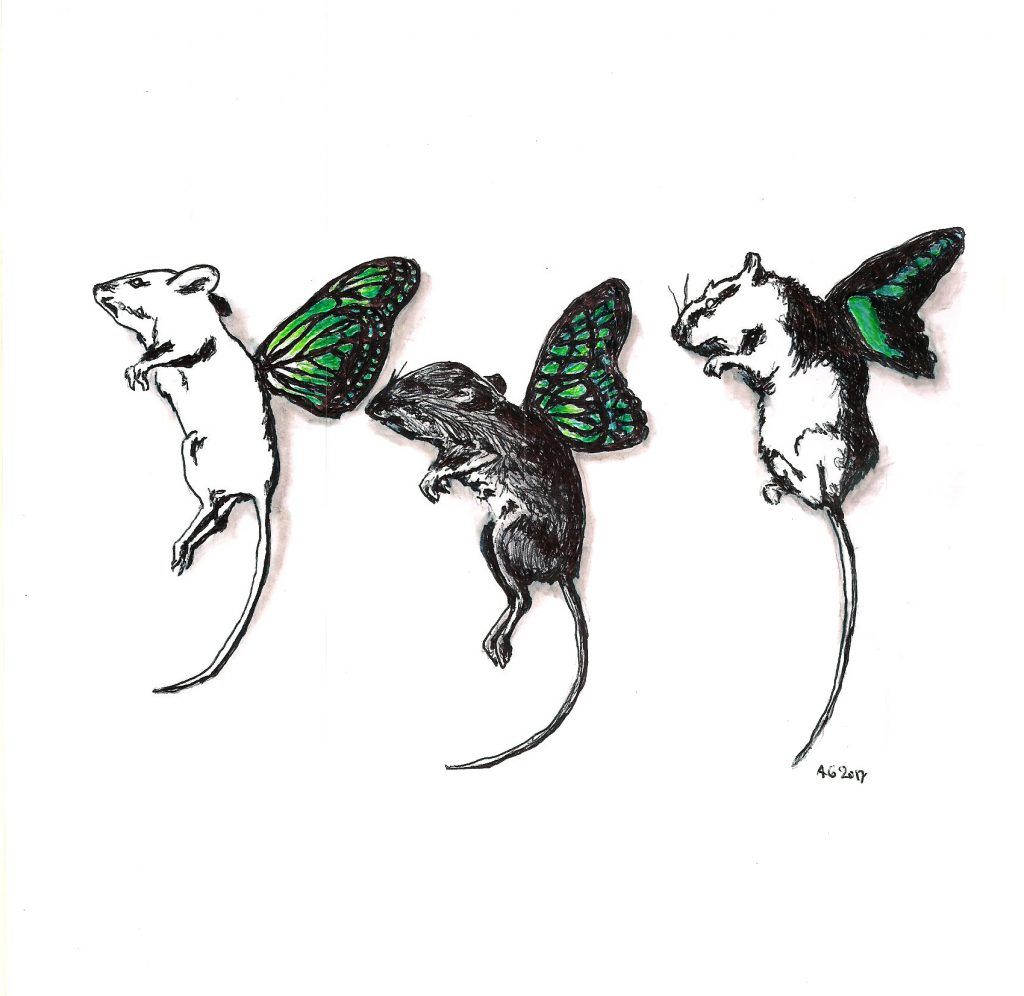 #mice #butterflies #wings #animalgenetics #grafik #graphic #tattoo #annegeorgius #corpusdelicti #principia.discordia