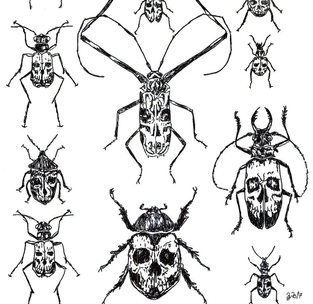 #invertebrates # bugs #bug #skull #skulls #grafik #graphic #tattoo #annegeorgius #corpusdelicti #principia.discordia