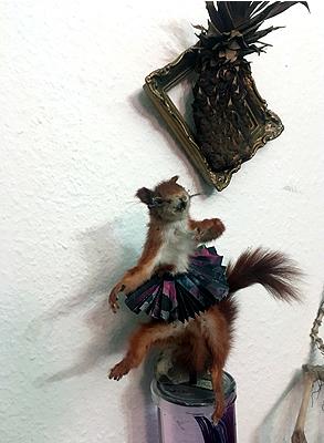 # squirrel #dermoplastik #eichhörnchen #tanzen #dancing #ballerina #präparat #annegeorgius #corpusdelicti #principia.discordia