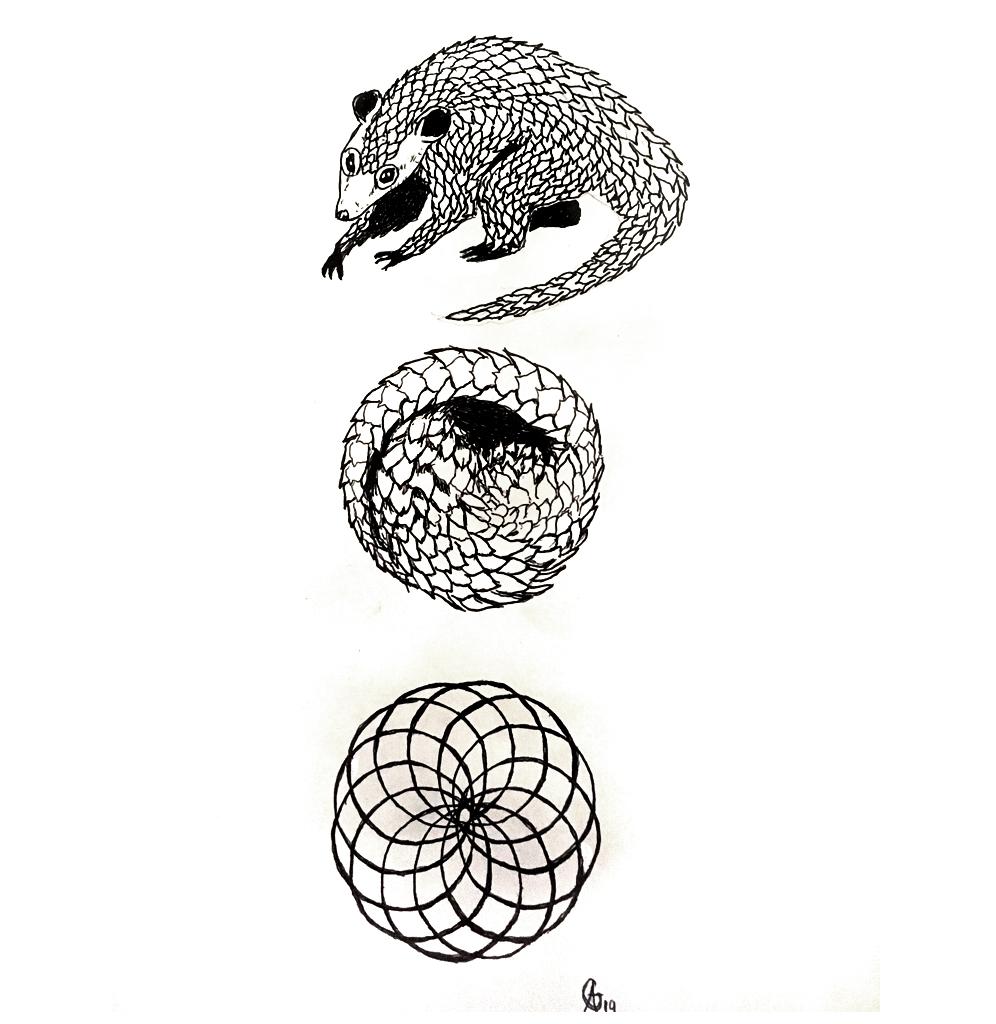 #armadillo #gürteltier #metamorphose #kreis #circle #grafik #graphic #tattoo #annegeorgius #corpusdelicti #principia.discordia